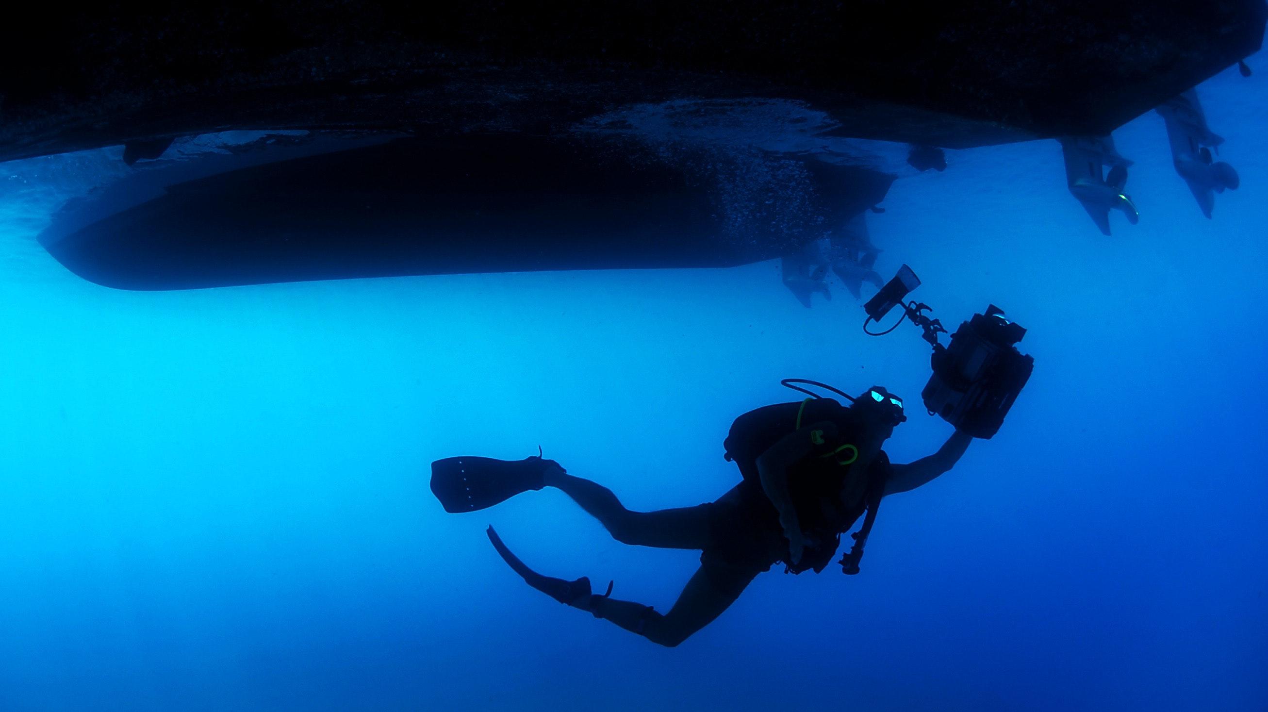 diver-ocean-person-71276
