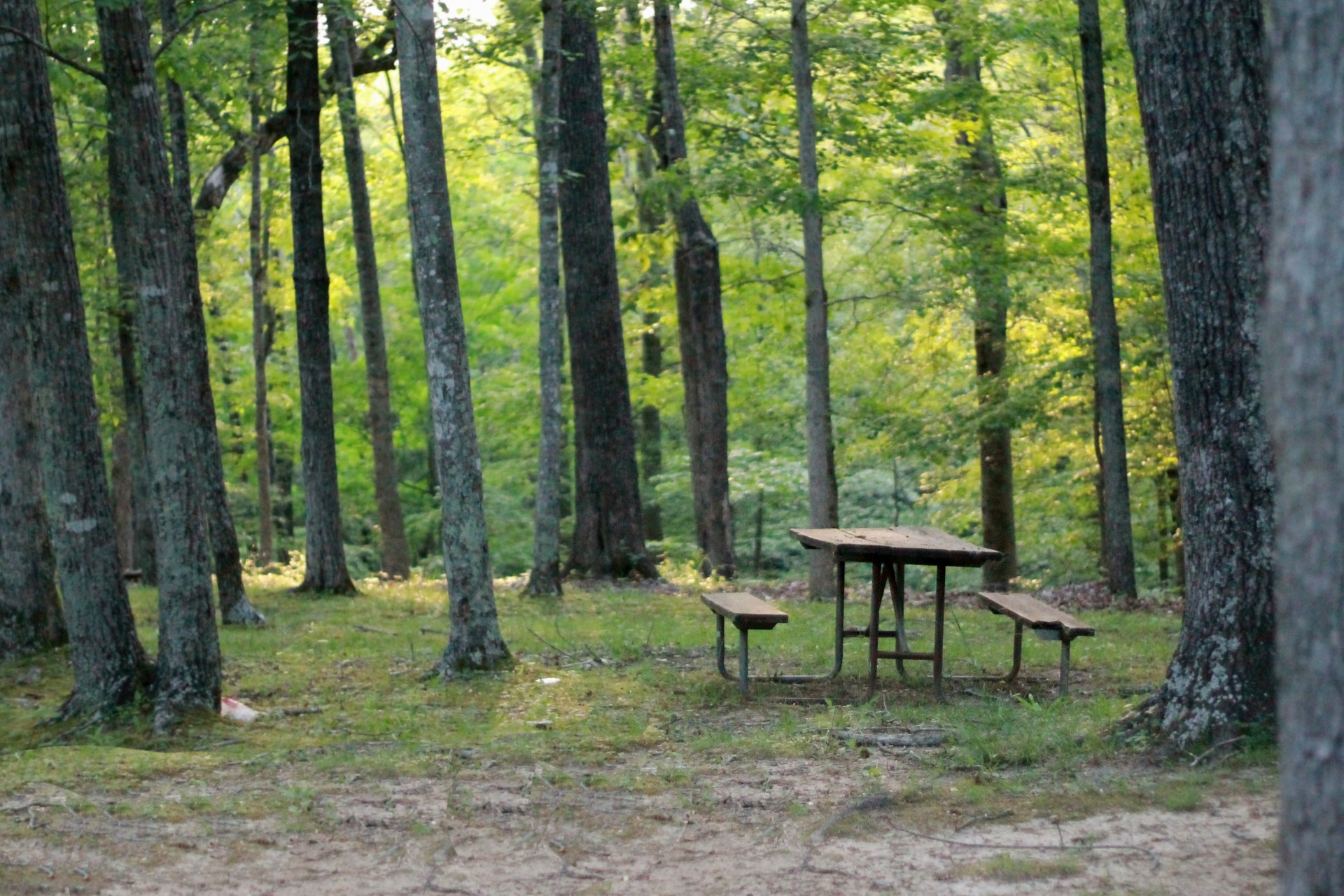 picnic-table-837221_1920